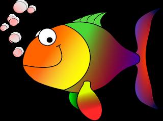 Tips Usaha Cara Budidaya Ikan Koi di Aquarium