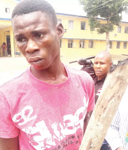 man beats father to death with firewood