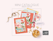 Mini Catalogus Voorjaar