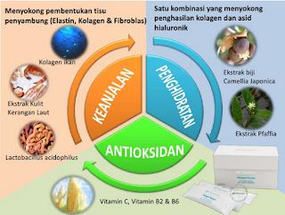 collagen shaklee; kolagen shaklee; kolagen terbaik untuk kulit; jenama kolagen terbaik; shaklee labuan