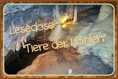 http://endlich2pause.blogspot.de/2014/08/drei-neue-lesekisten-o.html