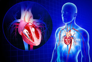 Cardiovascular Emergencies: Awareness And Precautions To Handle The Situation