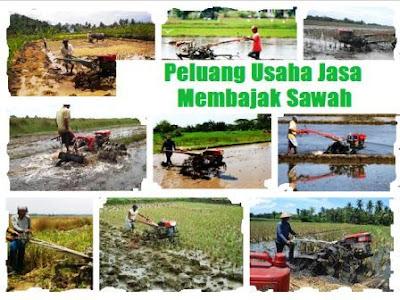 bisnis yang menguntungkan di sektor pertanian