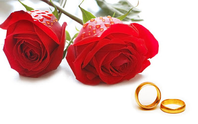 Happy roseday wallpapers Happy roseday images download Happy roseday images Happy roseday images free Happy roseday 2017 images Happy roseday images for facebook Happy roseday wallpapers hd Happy roseday wallpapers download Happy roseday wallpapers free download