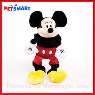 Mickey Mouse Toy ~ Focused on the Magic