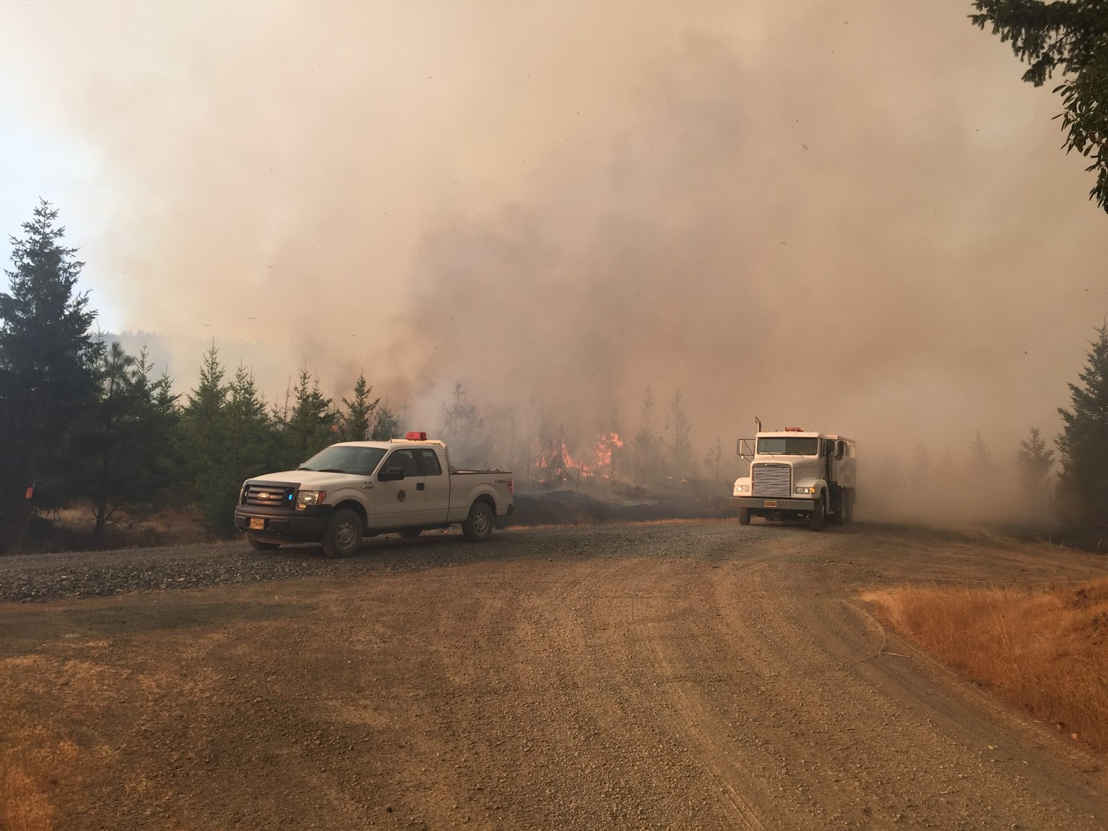 Wildfire   Oregon Dept of Forestry: August 2017