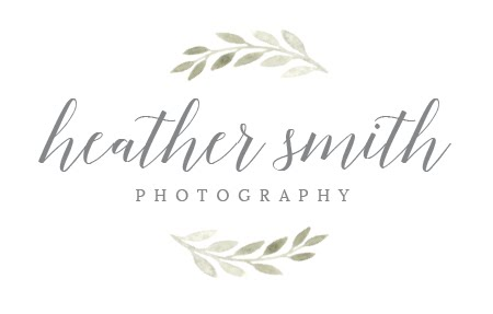 Heather Smith Studios