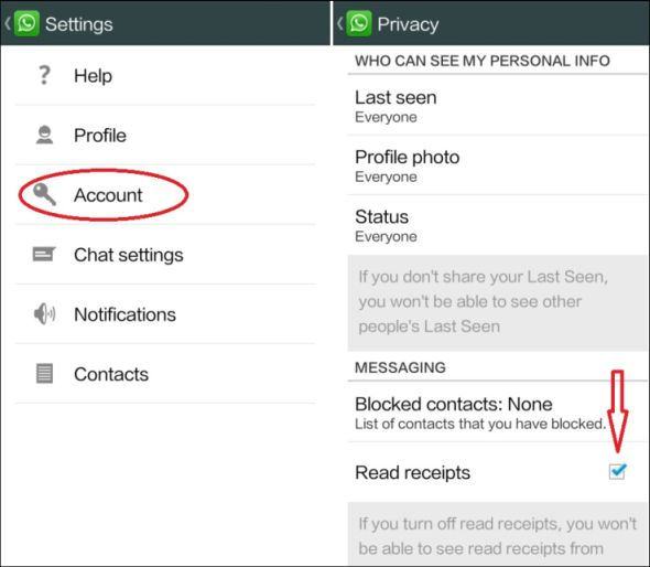 How to Disable and Remove Blue Ticks on Whatsapp