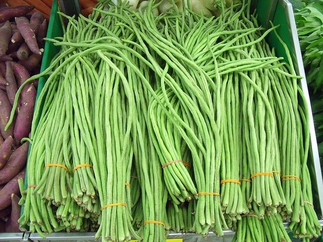 Kandungan gizi dan manfaat kacang panjang bagi kesehatan