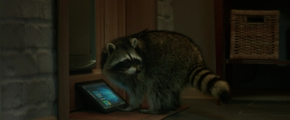 "Beeline ""Raccoon"" via Stink and Contrapunto BBDO Moscow"