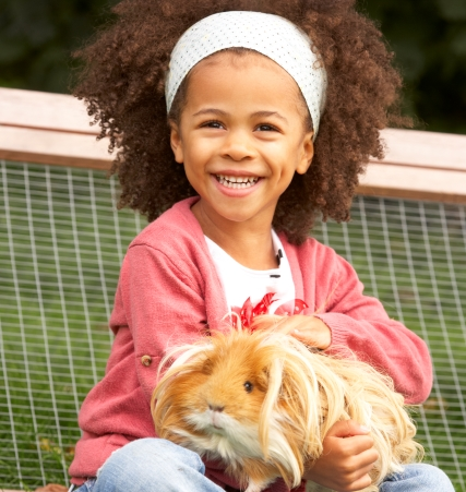 namc montessori studying zoology lower elementary vertebrate animals girl smiling with guinea pig