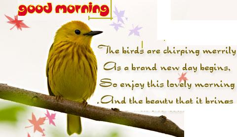 Good Morning Sms In English For Facebook Friends The Christmas Tree