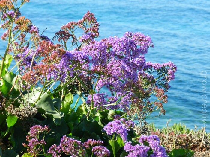 Purple Flowers and Ocean