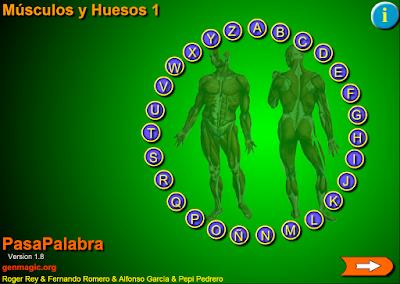 http://primerodecarlos.com/CUARTO_PRIMARIA/enero/Unidad7/actividades/naturales/pasapalabra_musculos_huesos.swf