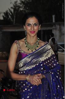 Model Shilpa Reddy Stills in Purple Silk Saree at Gudi Sambaralu 2017 Sri Ramachandra Swami Temple  0008.JPG