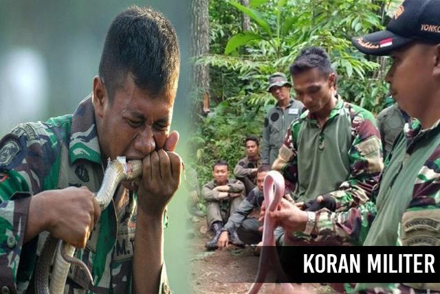 Prajurit TNI Santap 'Ular Untuk Dapat Bertahan Hidup