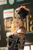 Sanjjanaa Galrani aka Archana Galrani in Maroon Gown beautiful Pics at IIFA Utsavam Awards 2017 34.JPG