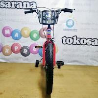 Sepeda Anak Erminio 235 BMX