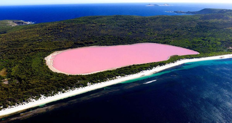 retba pink lake