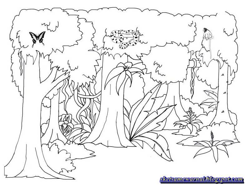 Sketsa Mewarnai Gambar Untuk Anak Sd Sketsa Mewarnai