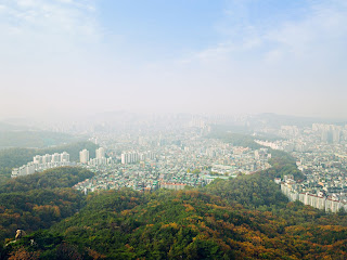 Panorama of Seoul city with forest bleeding into buildings.