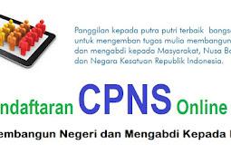 Cara mudah melakukan pendaftaran CPNS Online melalui Website BKN