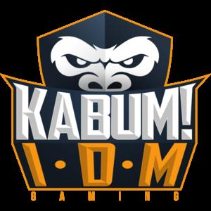 IDM 6.29 Build 2 Crack