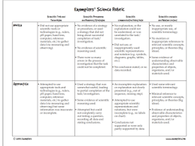 Here Is An Important Science Rubric for Teachers