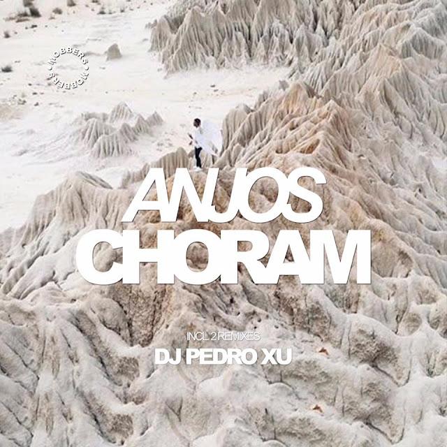 Mobbers - Anjos Choram (DJ Pedro Xu Remix)