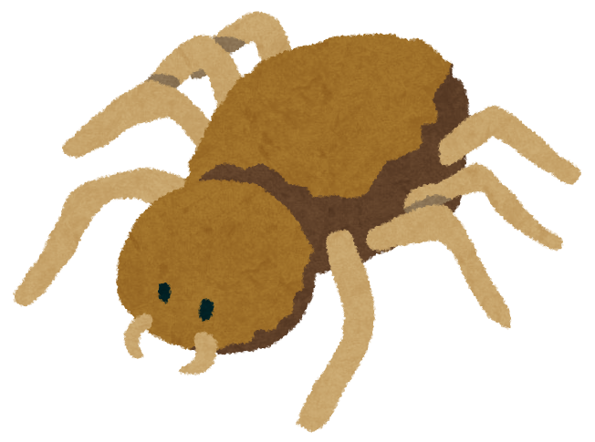 蜘蛛のイラスト かわいいフリー素材集 いらすとや
