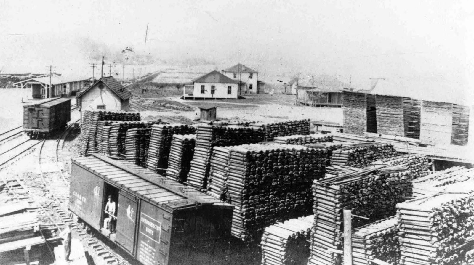 The Rowell Bosse North Carolina Room Saw Mill Lumber