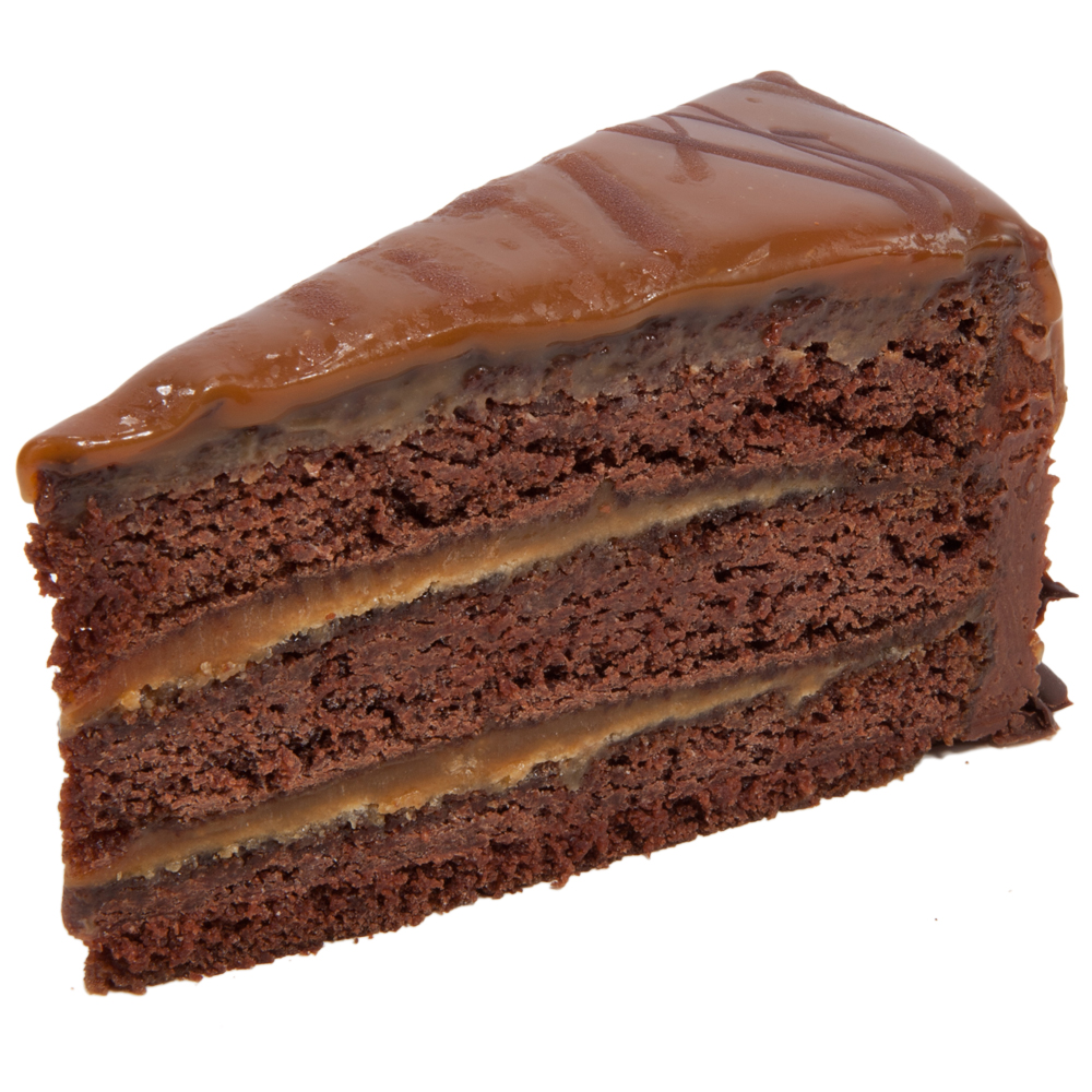 Fancy Chocolate Cake Slice
