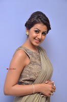 Nikki Galrani in Saree 042.JPG