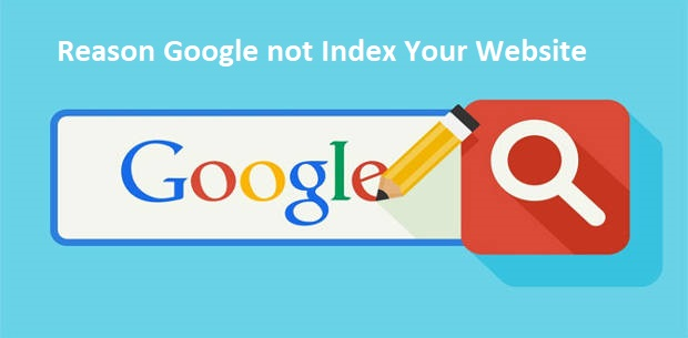 Reason Google not Index Your Website