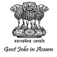 DC Office Biswanath Job
