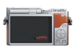 Panasonic Lumix GF9, вид сзади