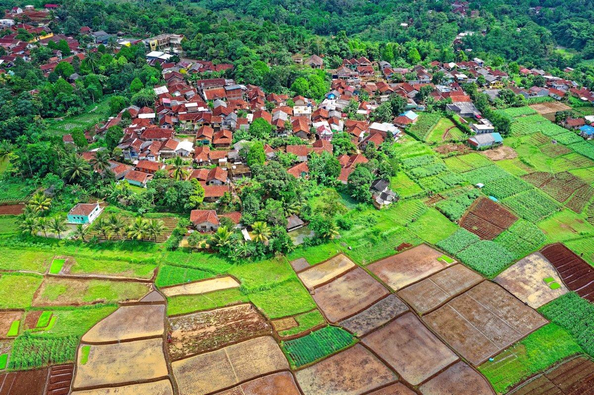peluang-usaha-di-desa-berkembang