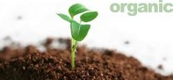 Proses Pembuatan Pupuk Kompos Alami