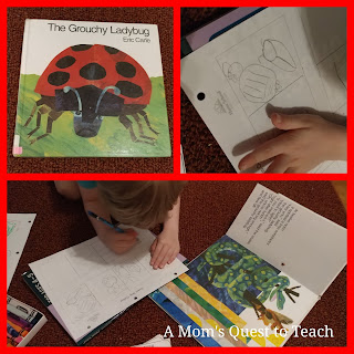 Grouchy Lady Bug Story Activities