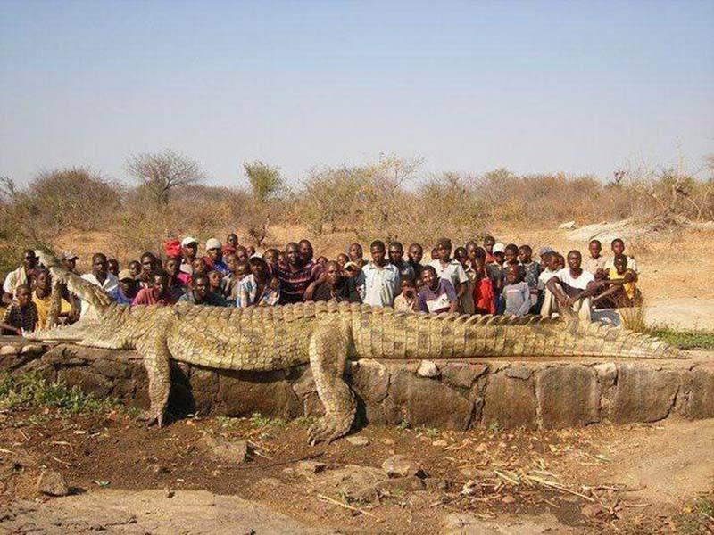 increibles-fotos-alrededor-planeta-mundo-imagenes-animales-personas__010.jpg