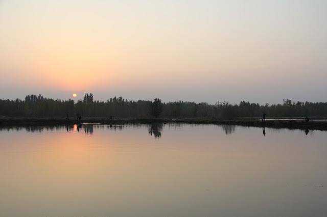 Ouzbékistan, Ferghana, étangs piscicoles d'Alisher, Zafar, © L. Gigout, 2012