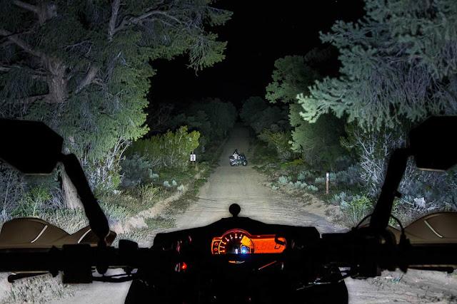 motor lewat hutan