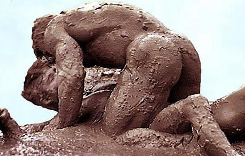 Muddy Gay Sex Pic 44