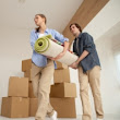 Find a licensed and professional house mover in London