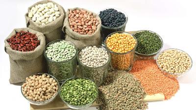 Colloid Mill - Giải pháp cho nghiền lỏng hạt ngũ cốc