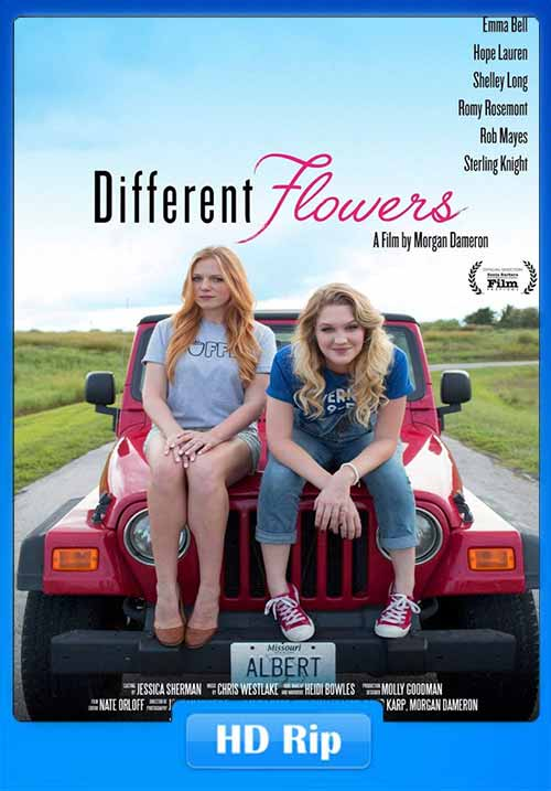 Different Flowers 2017 480p 300MB WEB-DL x264 Poster
