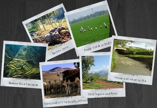 Ilustrasi Forum Komunitas Pertanian Indonesia Agroteknologi