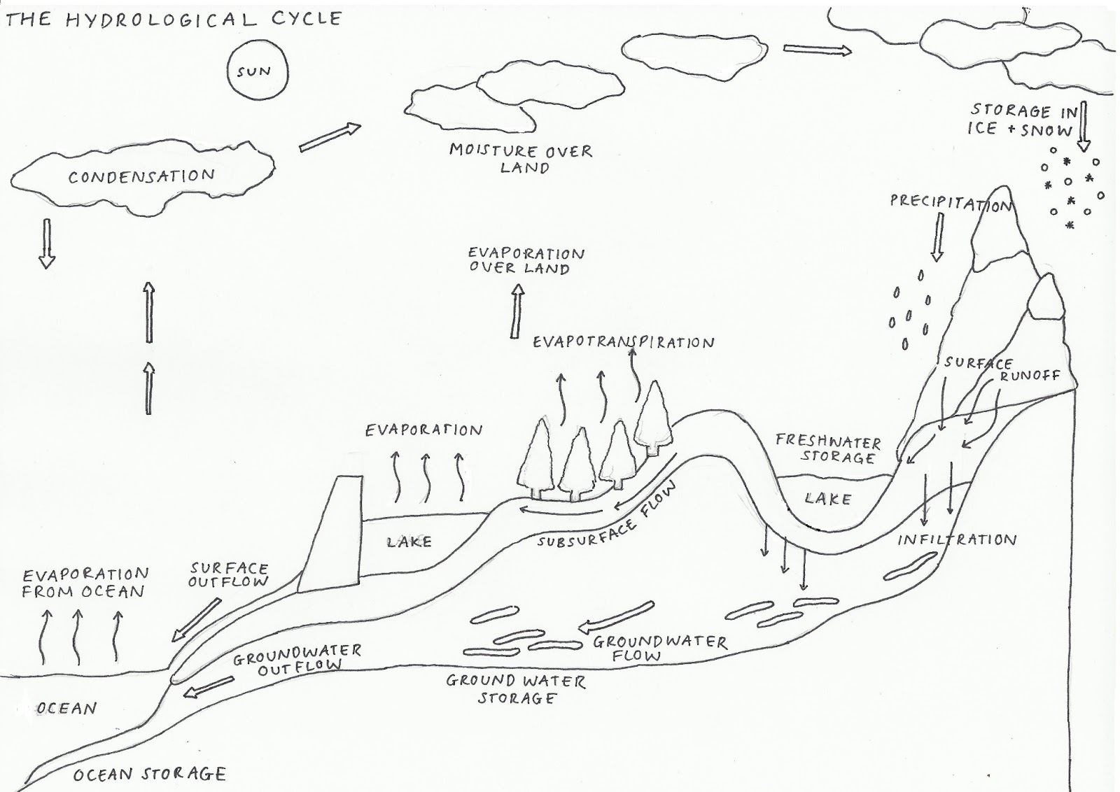 Water Cycle Diagram Without Labels 2003 Honda Crv Ac Wiring Phys Geog