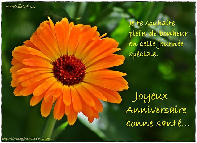 Carte d'anniversaire, souhaite, plein, bonheur, journée, spéciale,