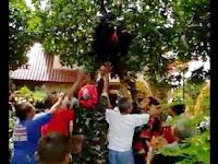 Ada Anggota TNI Nyangkut di Pohon, Ibu-Ibu Histeris Heboh